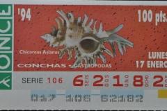 Chicoreus asianus