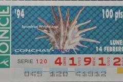 Spondylus wrightianus