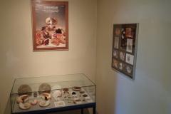 Exhibition Museum De Roos-003