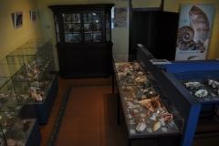 Exhibition Museum De Roos-010