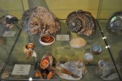 Exhibition Museum De Roos-014