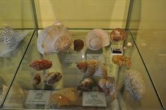 Exhibition Museum De Roos-024.1