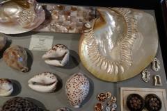 Exhibition Museum De Roos-044