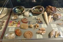 Exhibition Museum De Roos-046