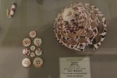 Exhibition Museum De Roos-054
