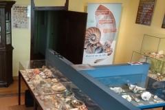 Exhibition Museum De Roos-058