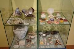 Exhibition Museum De Roos-067-2