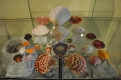 Exhibition Museum De Roos-068