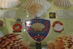 Exhibition Museum De Roos-069