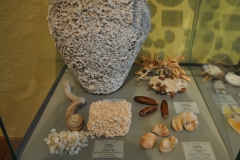 Exhibition Museum De Roos-073