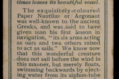 25 The Argonaut-2