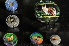 Cava Carmany Landsnail collage