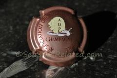 Champagne Association Dijonnaise